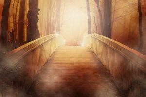 搭一座夢想與現實的橋梁